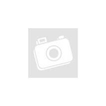 8 doboz Ayura Ganodermás Black Coffee vagy Cappuccino + 2 doboz AJÁNDÉK