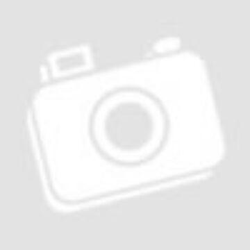 Ayura ganoderma gombás kávé